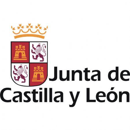 junta de castilla y leon consejeria de educacion: